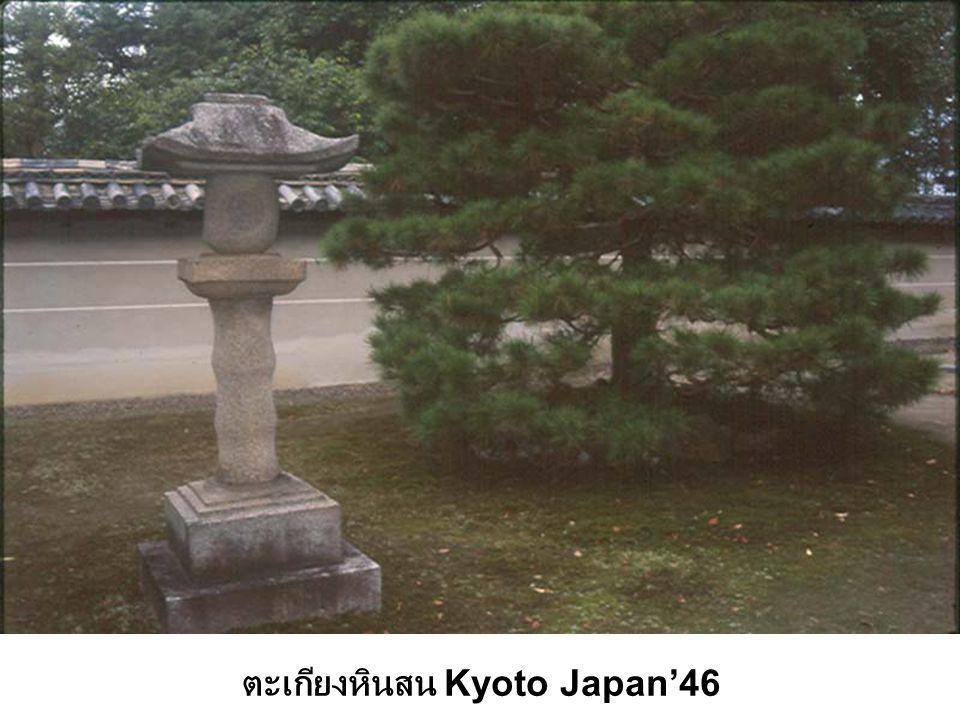ตะเกียงหินสน Kyoto Japan'46