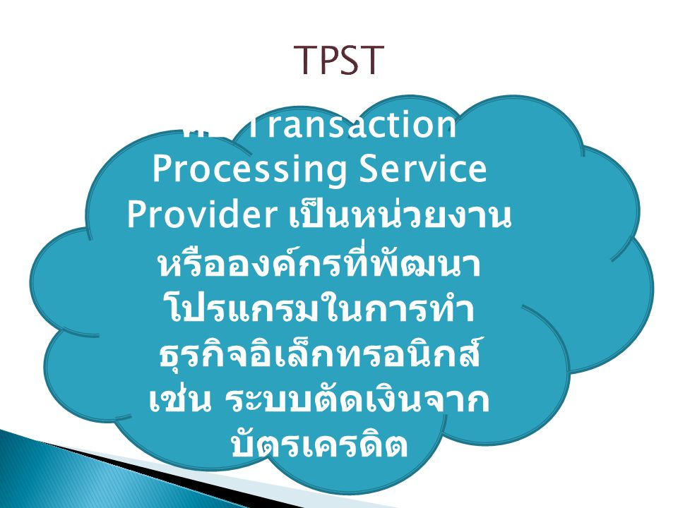 TPST คือ Transaction Processing Service Provider เป็นหน่วยงานหรือองค์กรที่พัฒนาโปรแกรมในการทำธุรกิจอิเล็กทรอนิกส์ เช่น ระบบตัดเงินจากบัตรเครดิต.