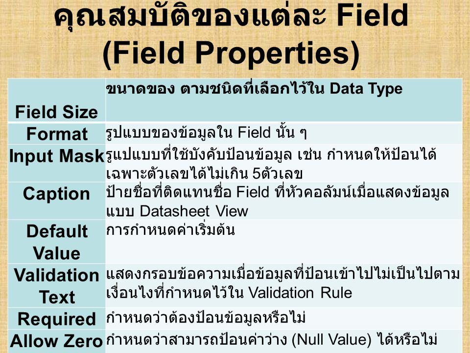 คุณสมบัติของแต่ละ Field (Field Properties)