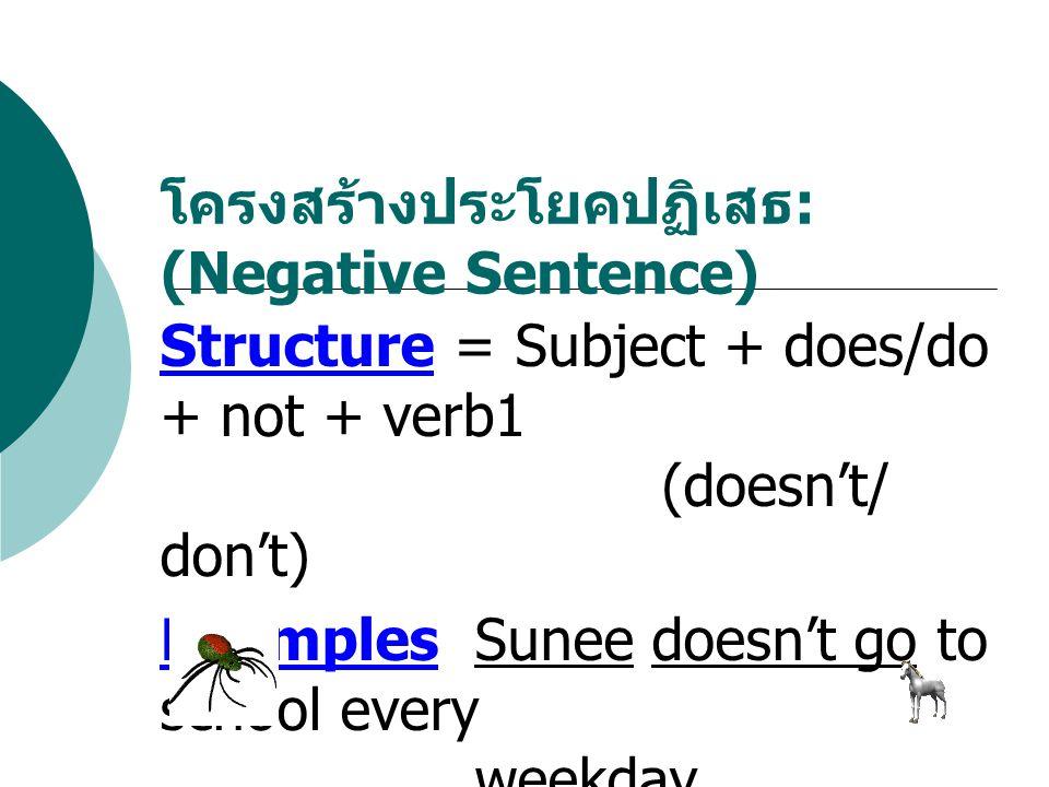 โครงสร้างประโยคปฏิเสธ: (Negative Sentence)