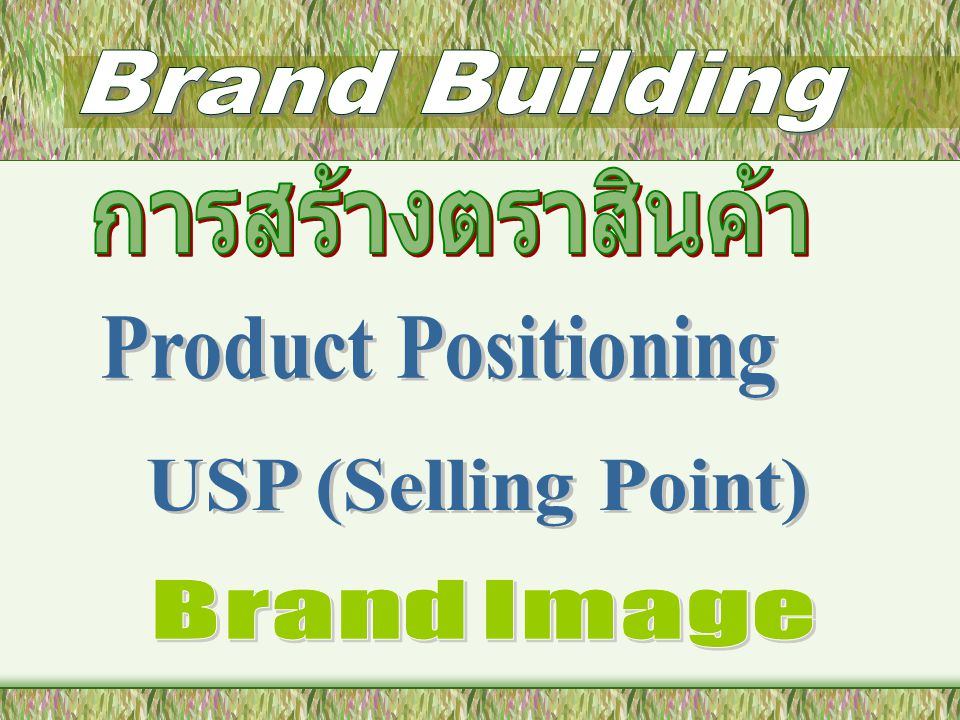 Brand Building การสร้างตราสินค้า Product Positioning USP (Selling Point) Brand Image
