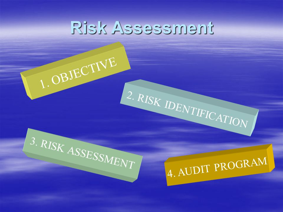 Risk Assessment 1. OBJECTIVE 2. RISK IDENTIFICATION 3. RISK ASSESSMENT