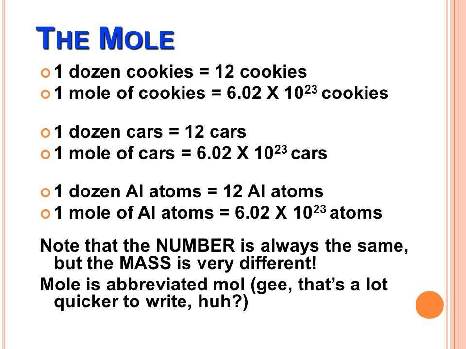 The Mole 1 dozen cookies = 12 cookies