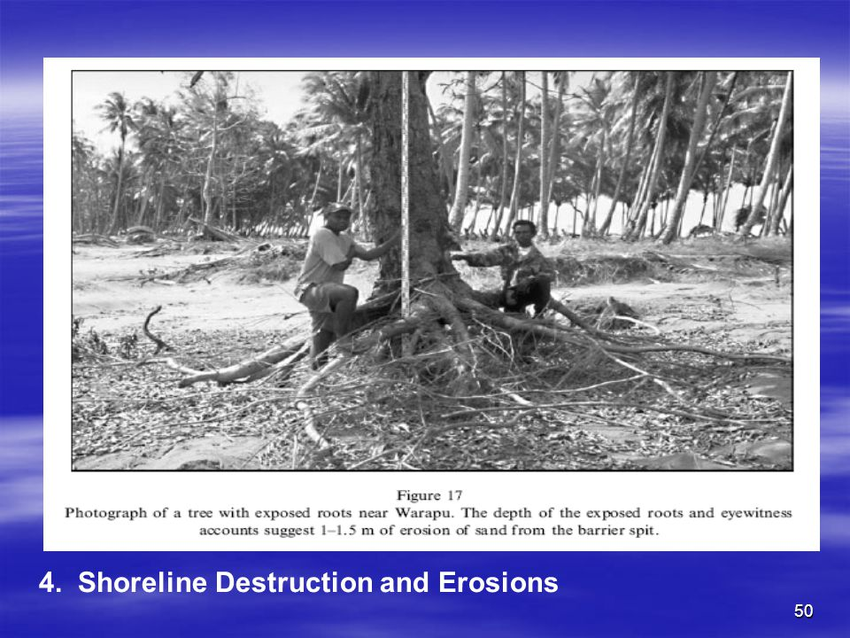 4. Shoreline Destruction and Erosions