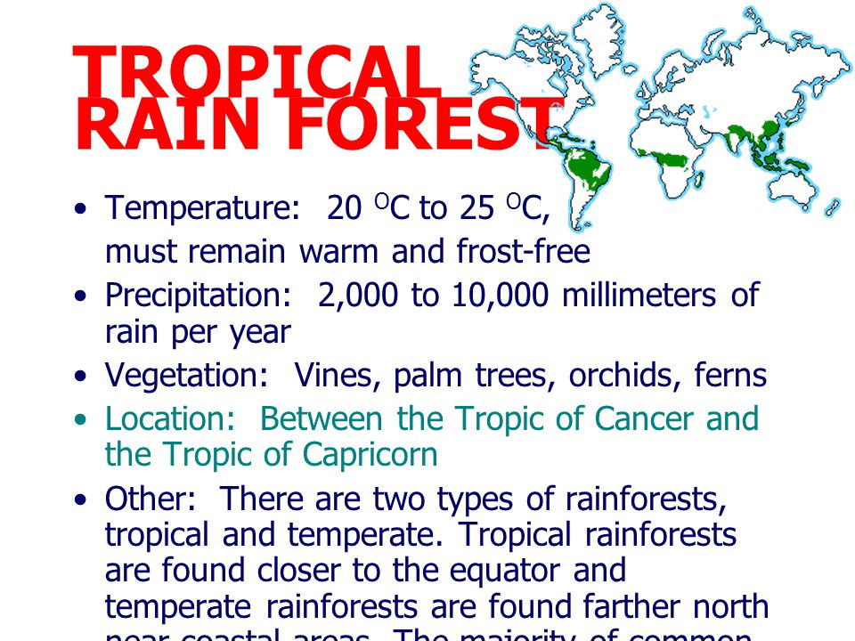 TROPICAL RAIN FOREST Temperature: 20 OC to 25 OC,