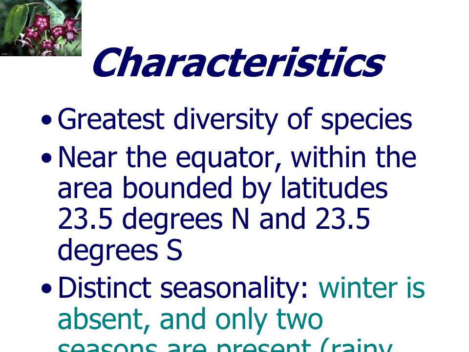 Characteristics Greatest diversity of species