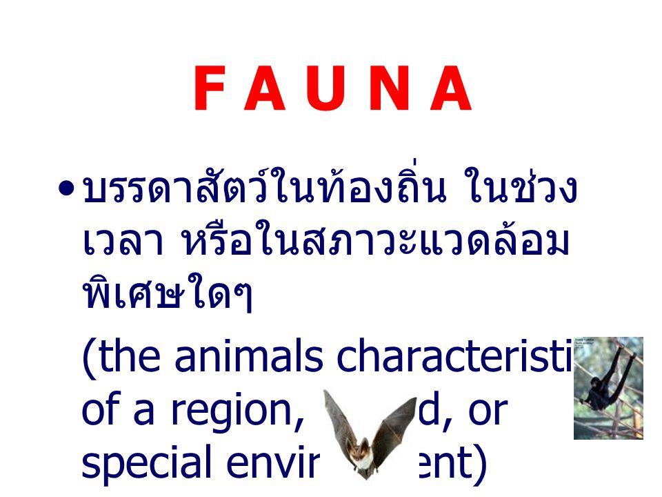 F A U N A บรรดาสัตว์ในท้องถิ่น ในช่วงเวลา หรือในสภาวะแวดล้อมพิเศษใดๆ
