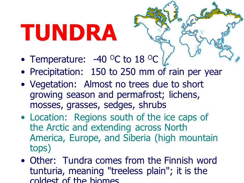 TUNDRA Temperature: -40 OC to 18 OC