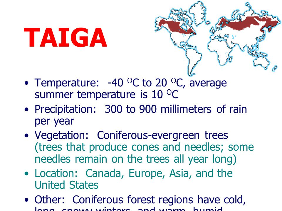 TAIGA Temperature: -40 OC to 20 OC, average summer temperature is 10 OC. Precipitation: 300 to 900 millimeters of rain per year.