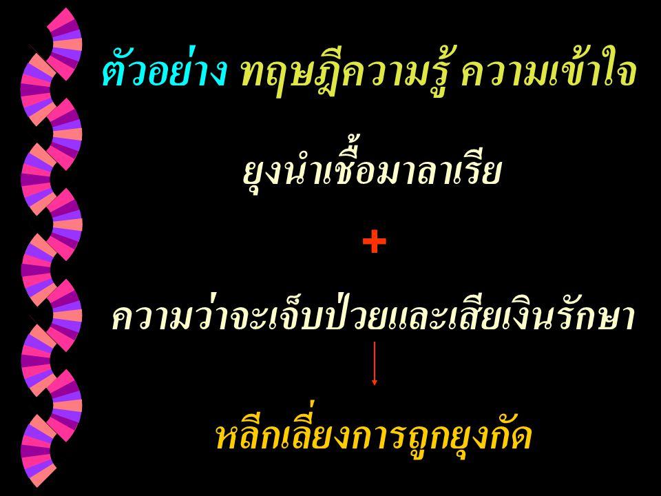 ตัวอย่าง ทฤษฎีความรู้ ความเข้าใจ
