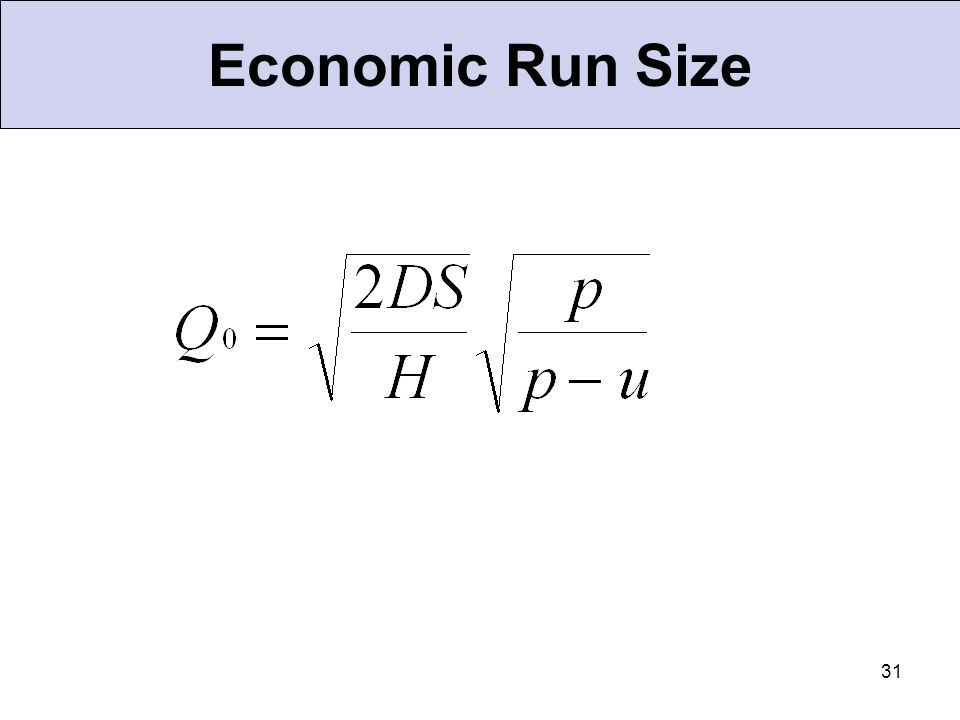 Economic Run Size