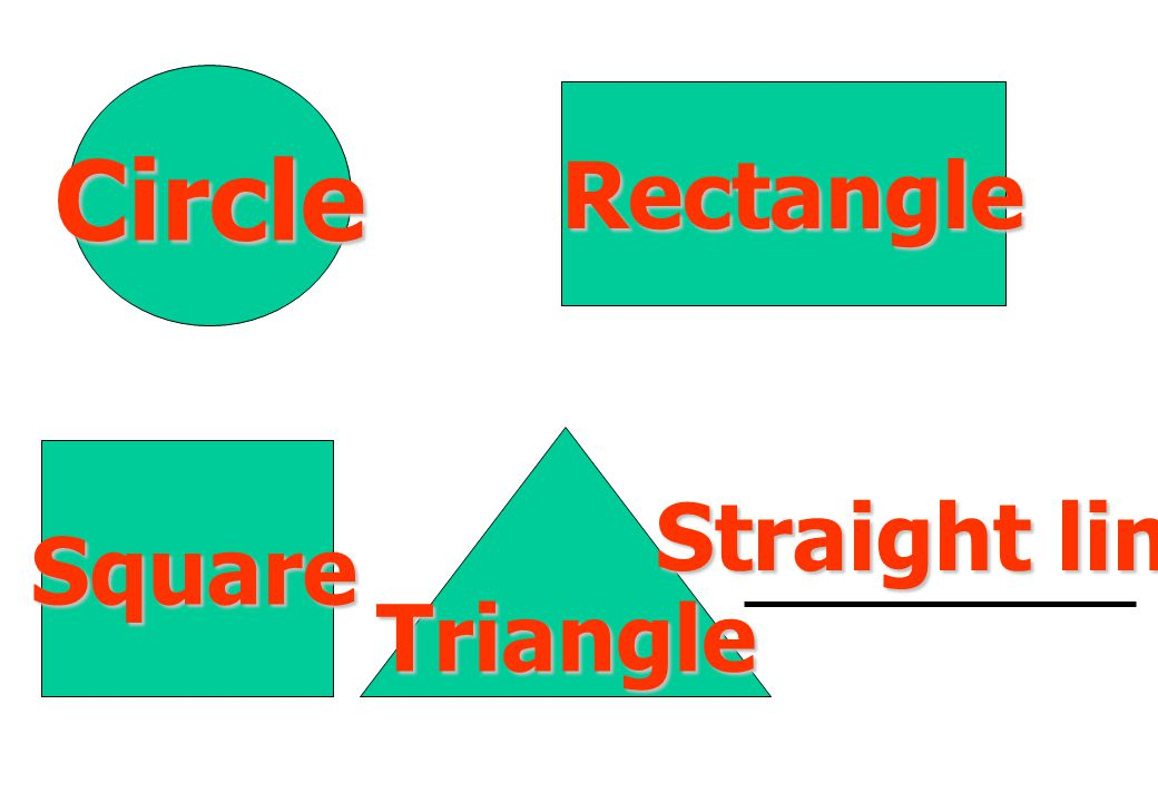 Circle Rectangle Straight line Square Triangle
