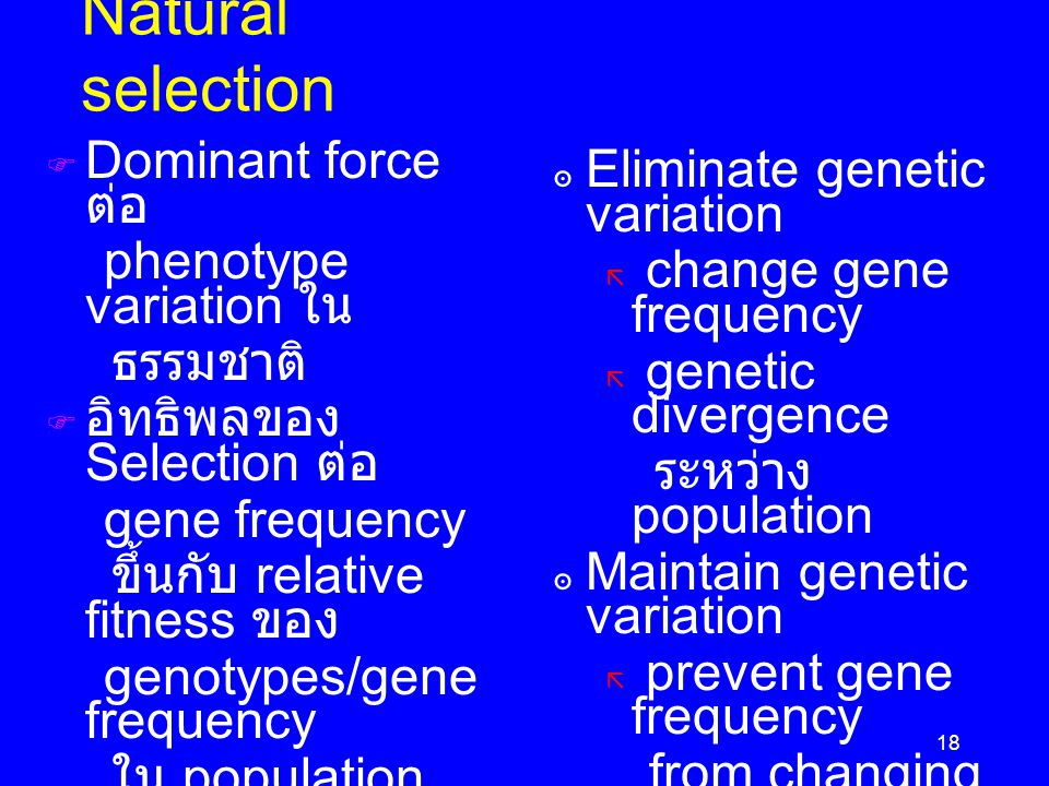 Natural selection Dominant force ต่อ Eliminate genetic variation