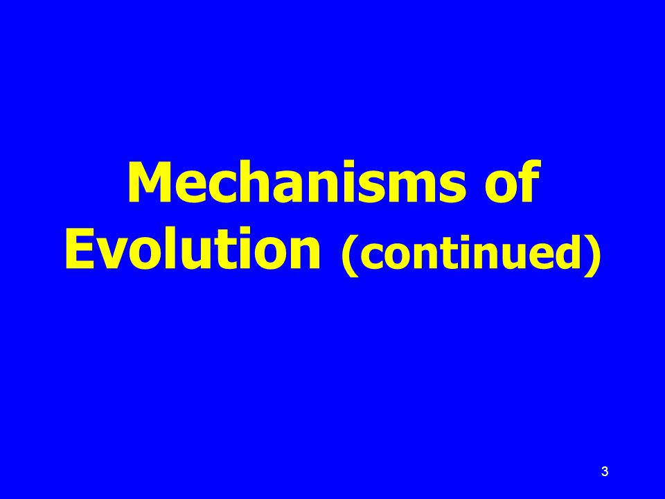 Mechanisms of Evolution (continued)