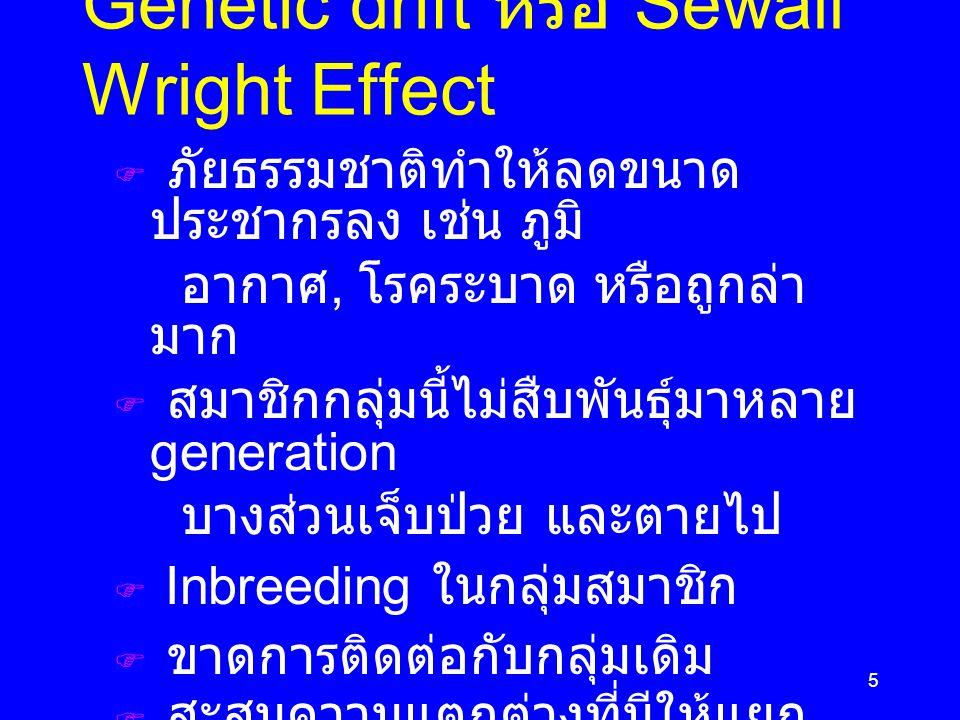 Genetic drift หรือ Sewall Wright Effect