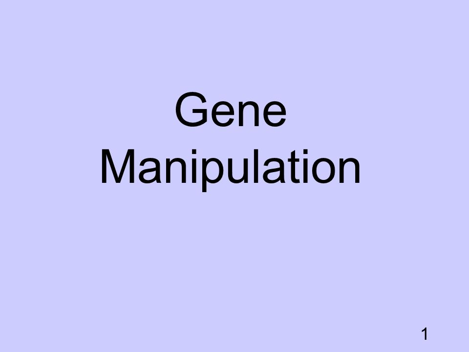 Gene Manipulation Gene Manipulation GManipulation.ppt