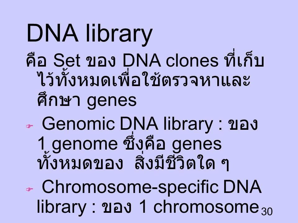 DNA library คือ Set ของ DNA clones ที่เก็บไว้ทั้งหมดเพื่อใช้ตรวจหาและศึกษา genes.