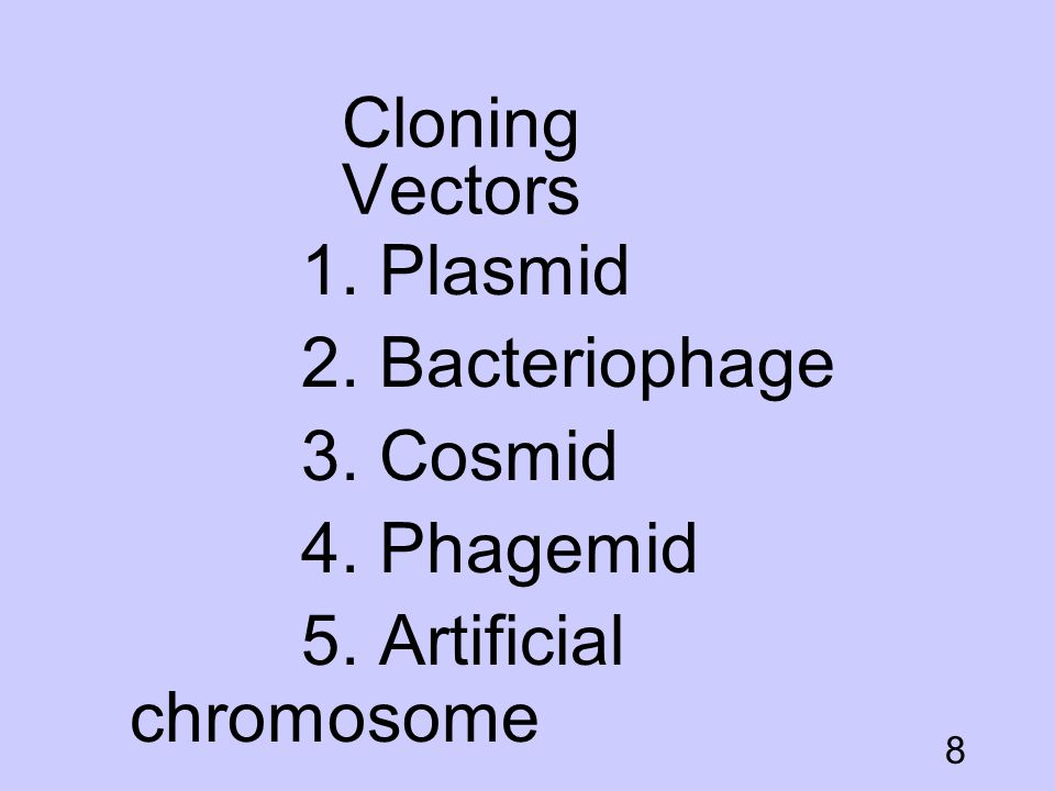 Cloning Vectors 1. Plasmid 2. Bacteriophage 3. Cosmid 4. Phagemid 5. Artificial chromosome