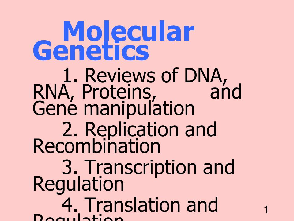 Replication 25/11/00. Molecular Genetics. 1. Reviews of DNA, RNA, Proteins, and Gene manipulation.