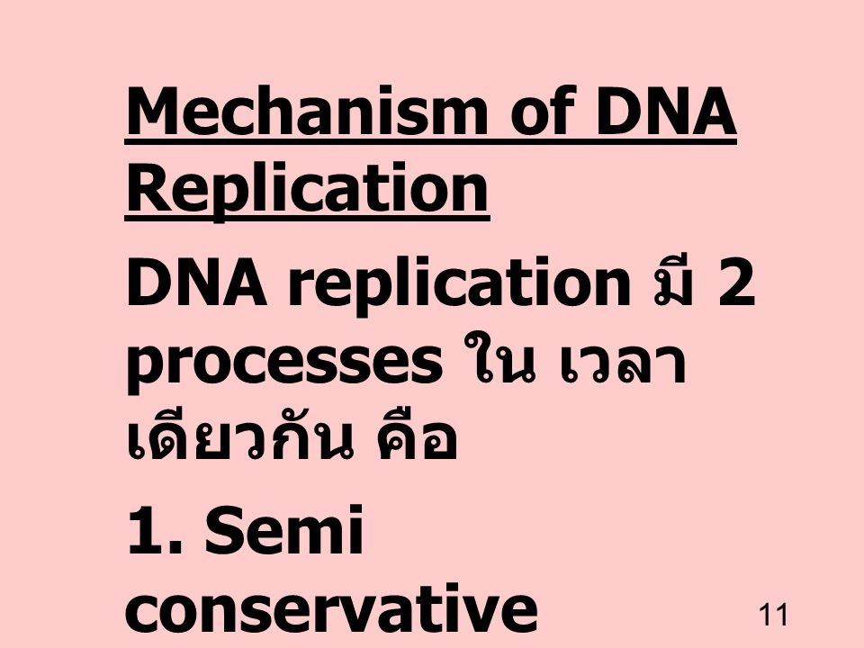 Mechanism of DNA Replication