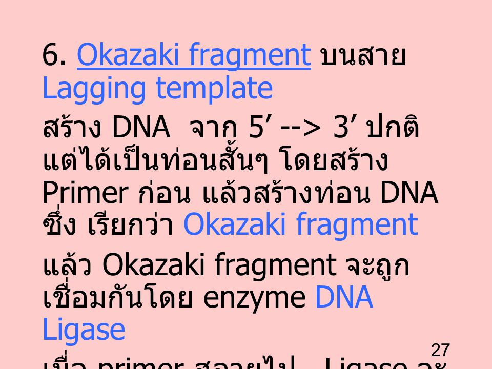6. Okazaki fragment บนสาย Lagging template