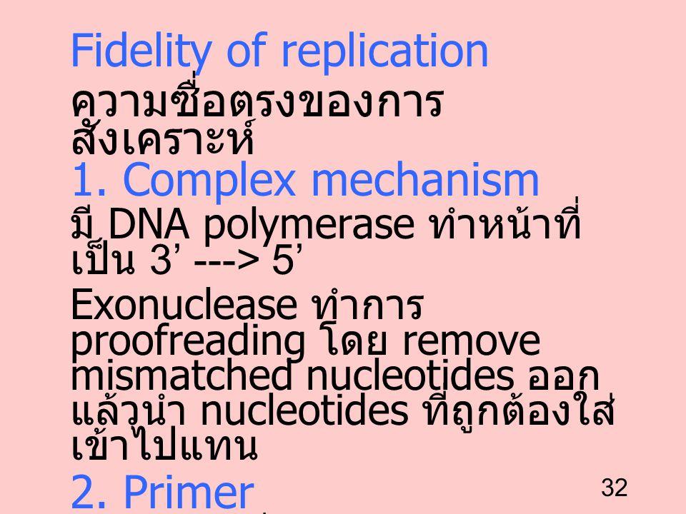 Fidelity of replication ความซื่อตรงของการสังเคราะห์