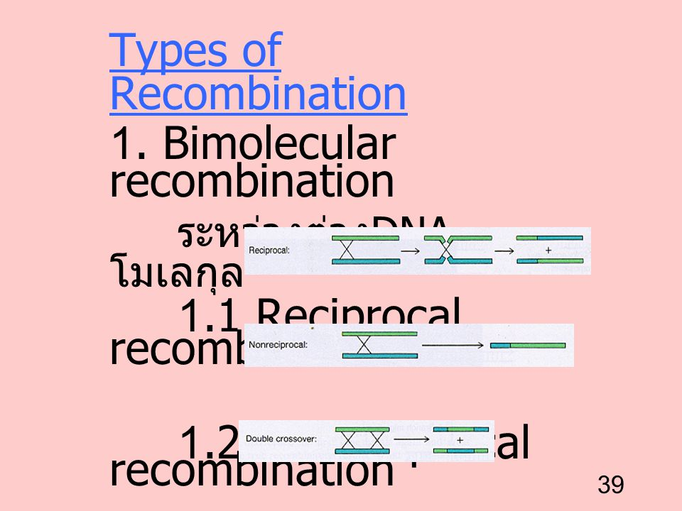 Types of Recombination 1. Bimolecular recombination