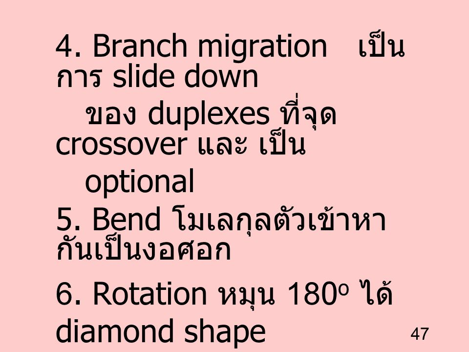 4. Branch migration เป็นการ slide down