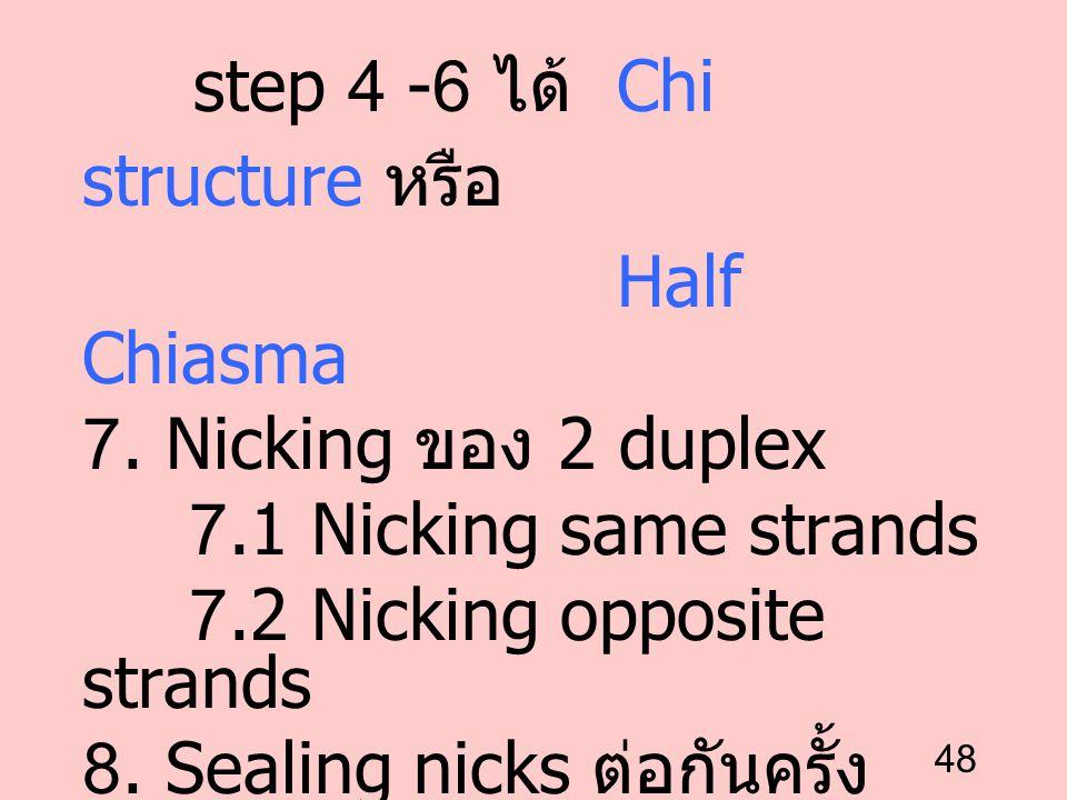 step 4 -6 ได้ Chi structure หรือ