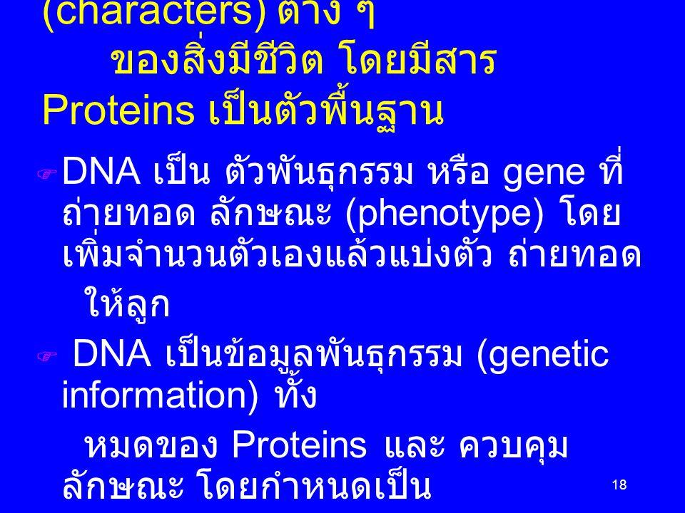 Phenotype คือ ลักษณะ (characters) ต่าง ๆ