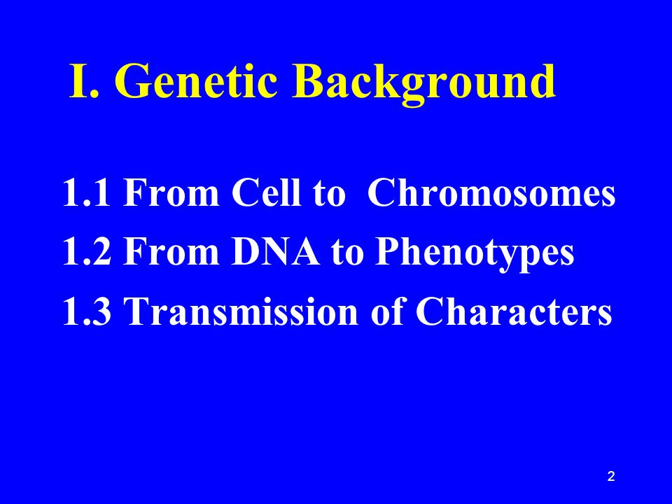 I. Genetic Background 1.1 From Cell to Chromosomes