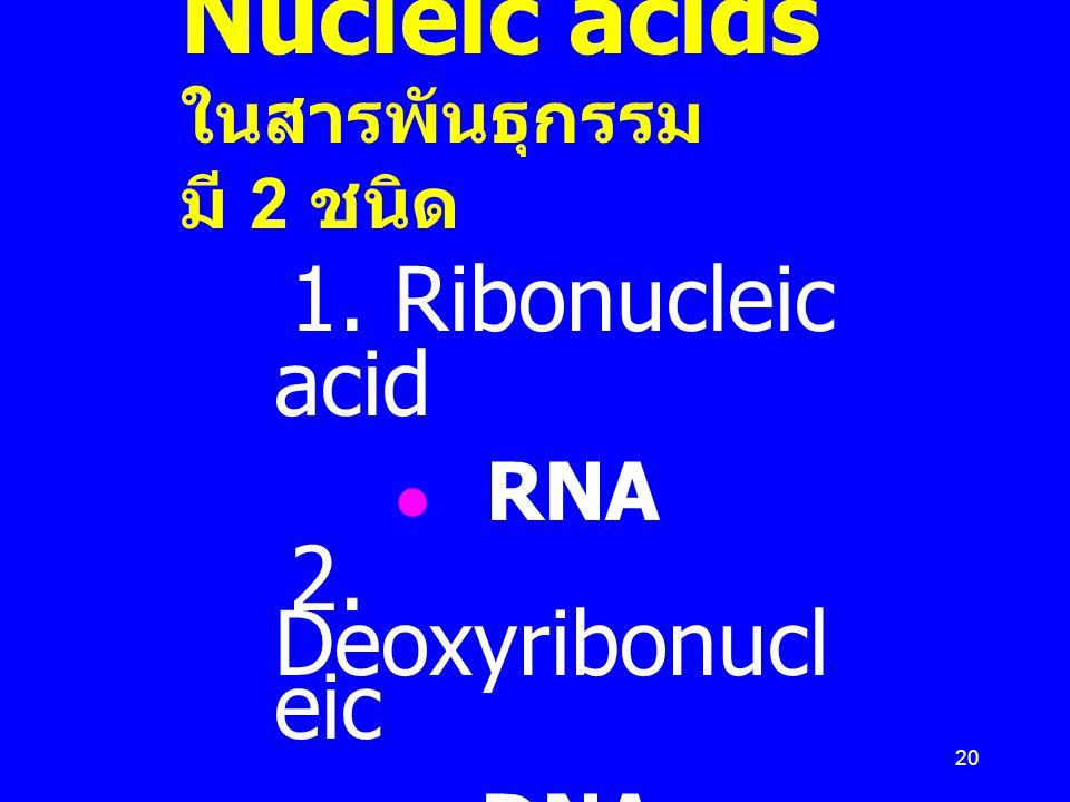 Nucleic acids ในสารพันธุกรรม มี 2 ชนิด