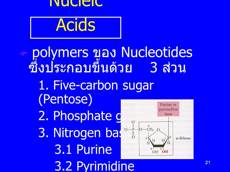 Nucleic Acids polymers ของ Nucleotides ซึ่งประกอบขึ้นด้วย 3 ส่วน