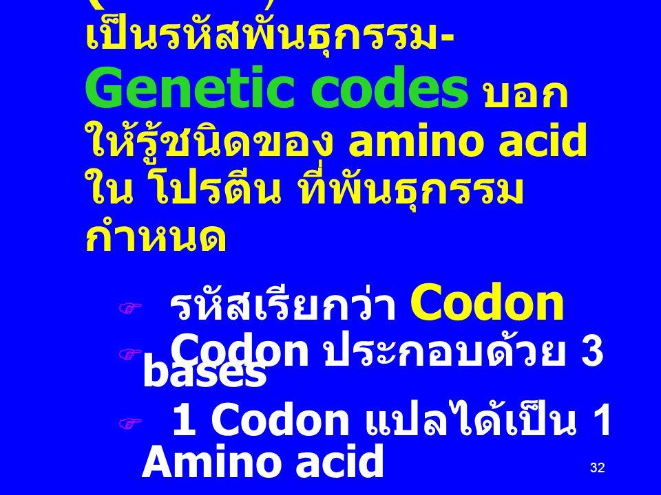 Messenger RNA (mRNA) เป็นรหัสพันธุกรรม- Genetic codes บอกให้รู้ชนิดของ amino acid ใน โปรตีน ที่พันธุกรรมกำหนด
