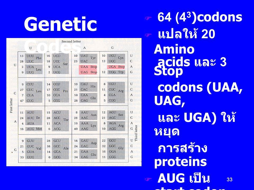 Genetic Codes 64 (43)codons แปลให้ 20 Amino acids และ 3 Stop