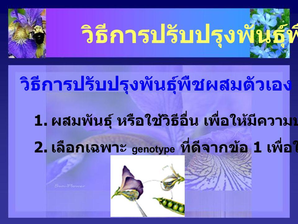 วิธีการปรับปรุงพันธุ์พืช