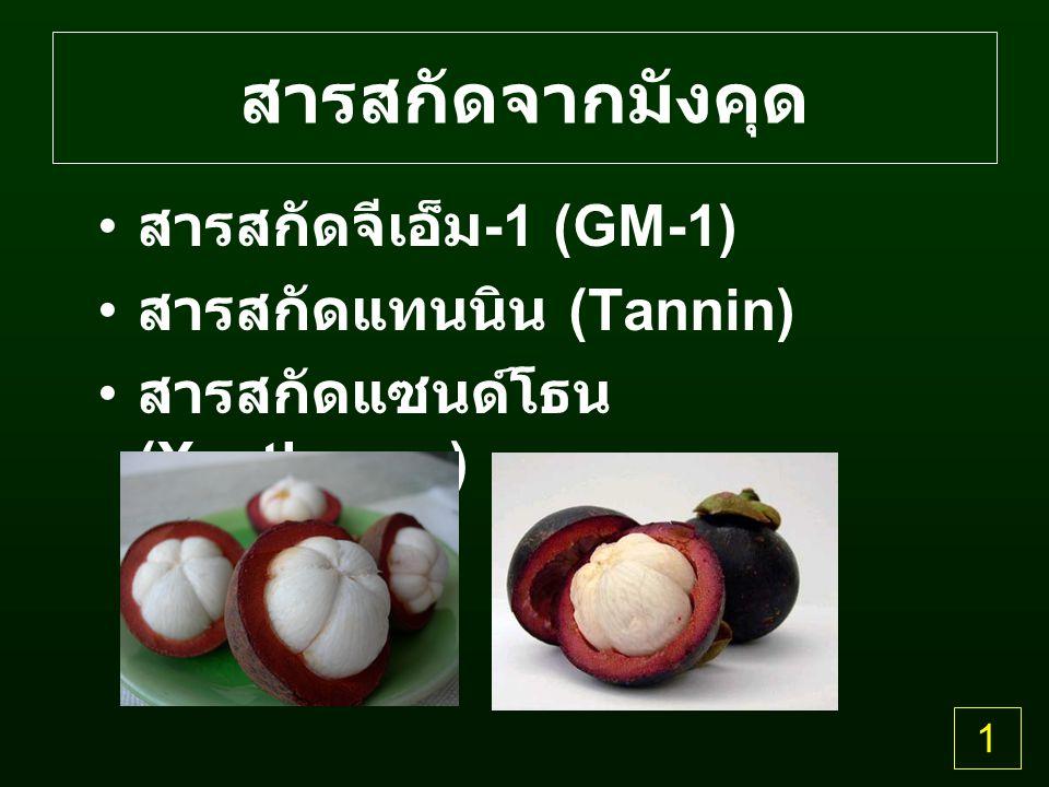 สารสกัดจากมังคุด สารสกัดจีเอ็ม-1 (GM-1) สารสกัดแทนนิน (Tannin)