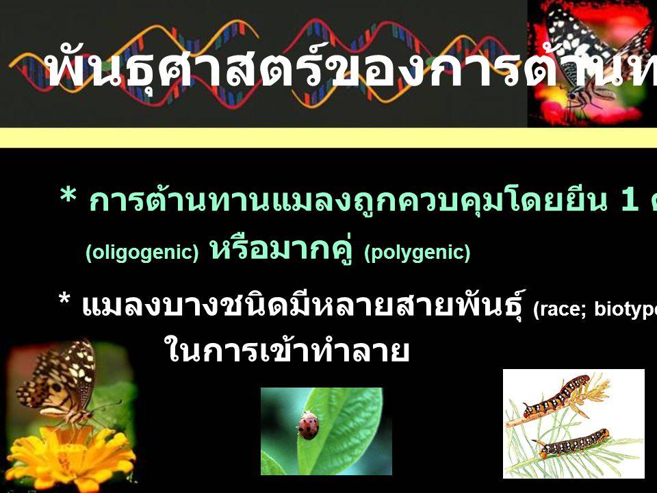 พันธุศาสตร์ของการต้านทานแมลง