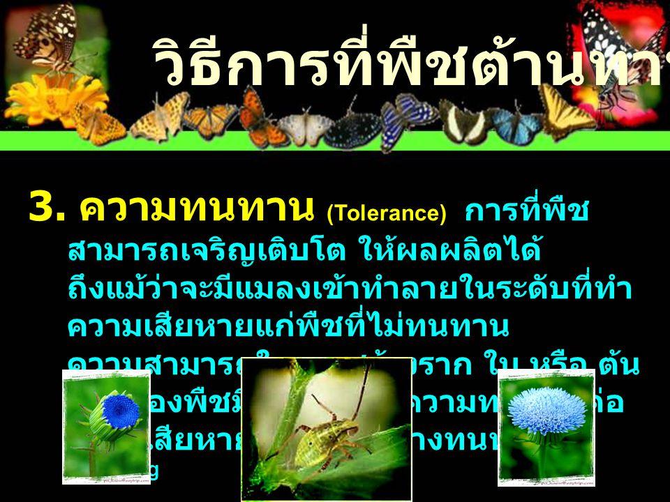 วิธีการที่พืชต้านทานแมลง