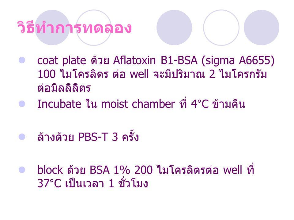 วิธีทำการทดลอง coat plate ด้วย Aflatoxin B1-BSA (sigma A6655) 100 ไมโครลิตร ต่อ well จะมีปริมาณ 2 ไมโครกรัมต่อมิลลิลิตร.