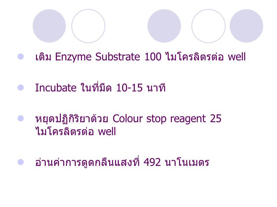 เติม Enzyme Substrate 100 ไมโครลิตรต่อ well