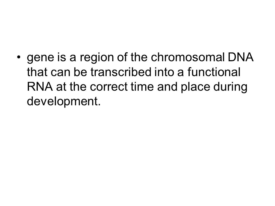 gene is a region of the chromosomal DNA that can be transcribed into a functional RNA at the correct time and place during development.