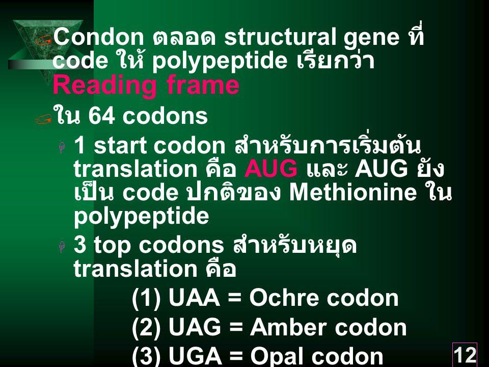 Condon ตลอด structural gene ที่ code ให้ polypeptide เรียกว่า Reading frame