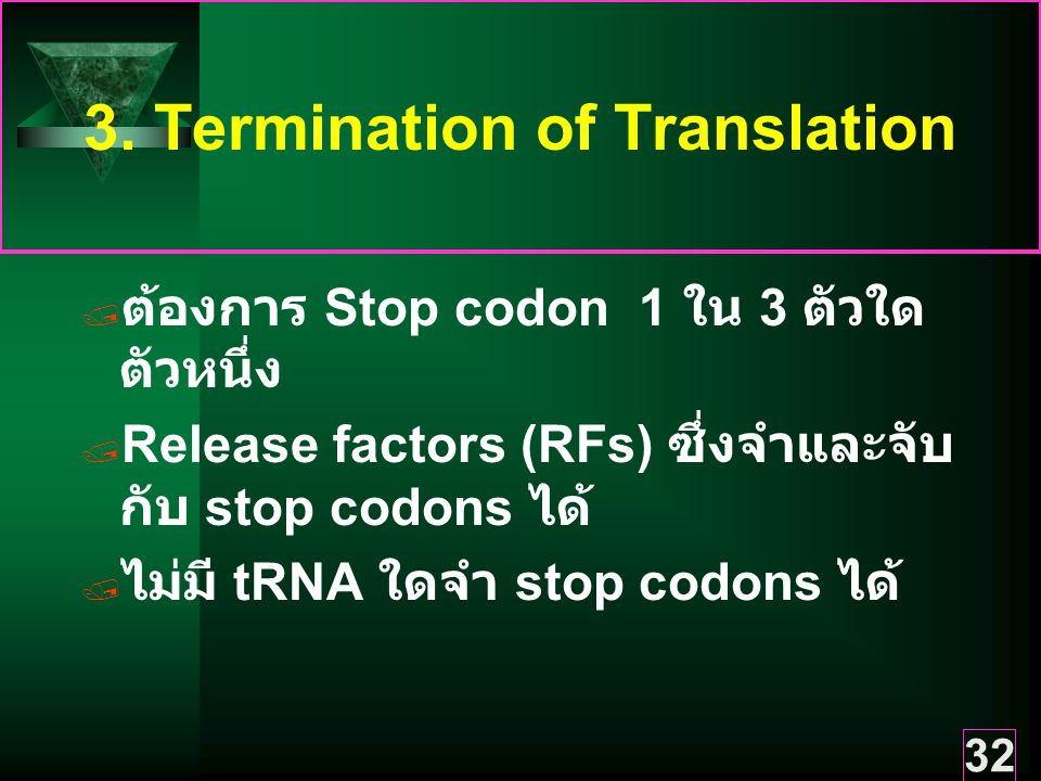 3. Termination of Translation