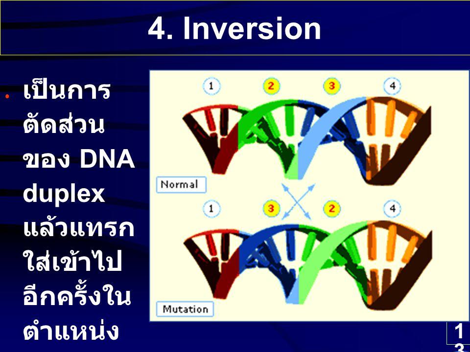4. Inversion เป็นการตัดส่วนของ DNA duplex แล้วแทรกใส่เข้าไปอีกครั้งในตำแหน่งเดิมแต่สลับทิศทาง
