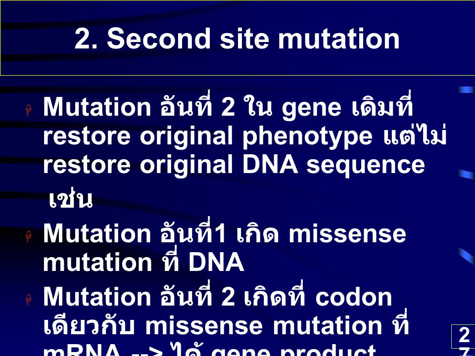 2. Second site mutation Mutation อันที่ 2 ใน gene เดิมที่ restore original phenotype แต่ไม่ restore original DNA sequence.