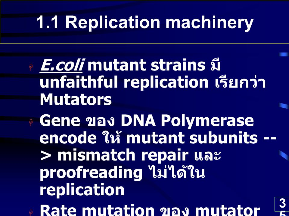 1.1 Replication machinery