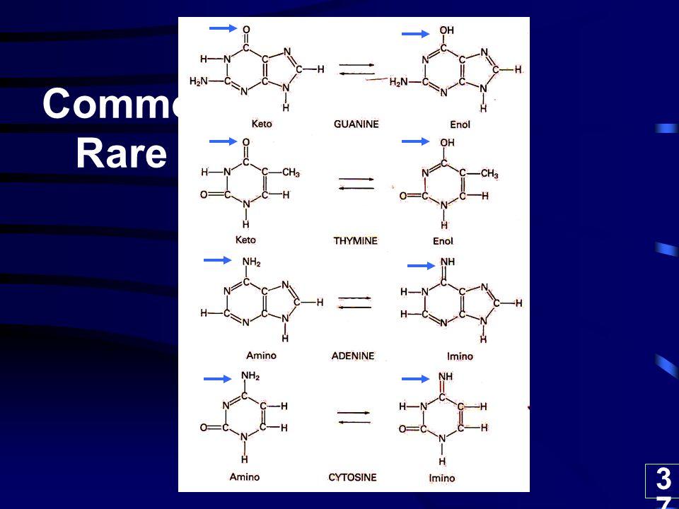 Common Rare