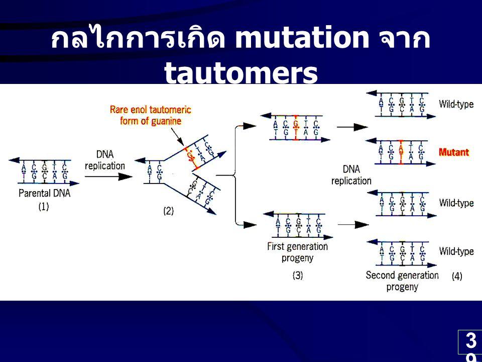กลไกการเกิด mutation จาก tautomers