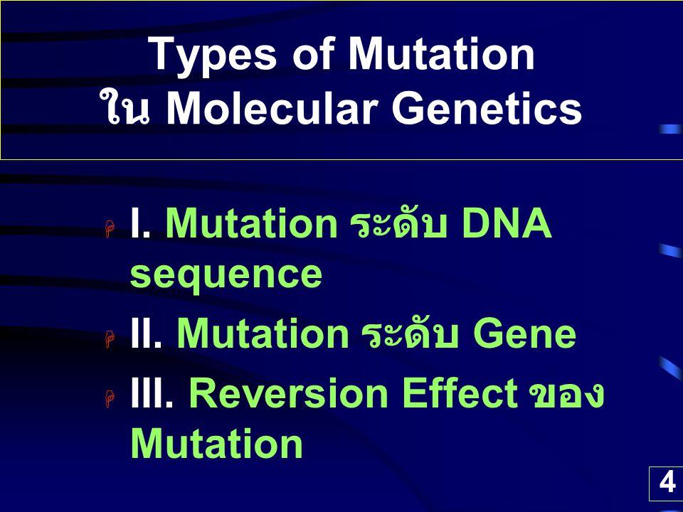 Types of Mutation ใน Molecular Genetics